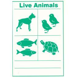 Live Animals IATA Cargo