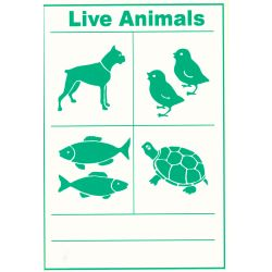 Live Animals IATA Cargo